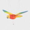papuga latająca